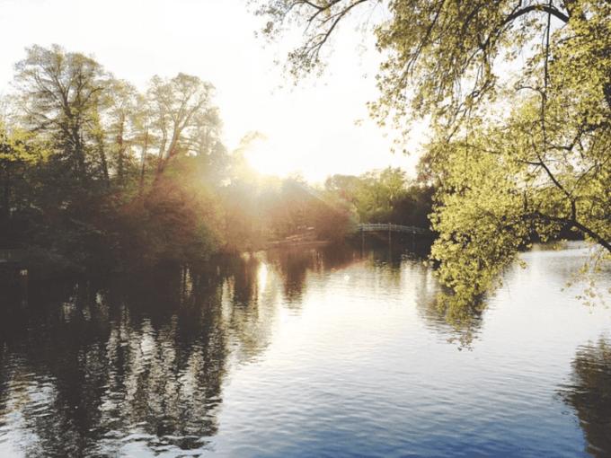 Hamburg-Eppendorf-Sonne-Haynspark