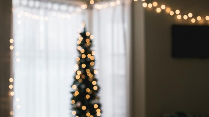 5 orte an denen du deinen tannenbaum selbst f llen kannst mit vergn gen hamburg. Black Bedroom Furniture Sets. Home Design Ideas